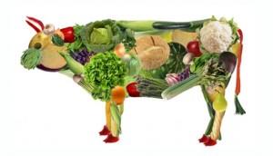 Veggy Cow